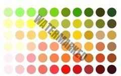 culori clade machiaj