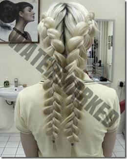 braided hair 8