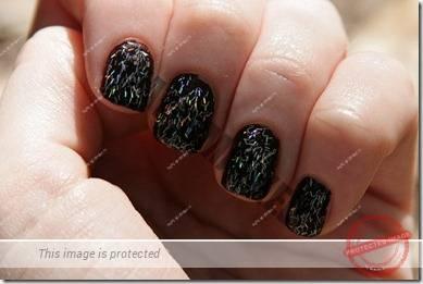 manicure 198