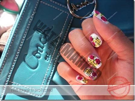 manicure 211