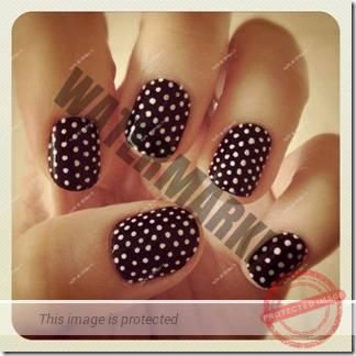 manicure 293