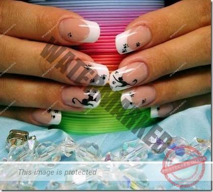 manicure 79