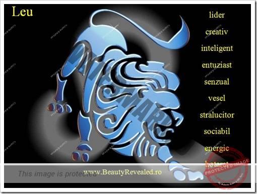 4 calitatiile zodiilor leu