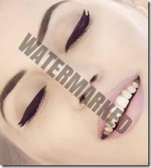 eyeliner style 17