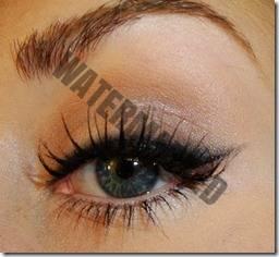 eyeliner style 40