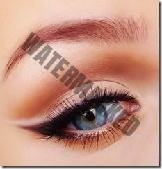 eyeliner style 42