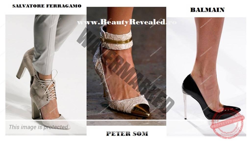 Pantofi 2013_ascutit