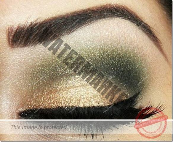 brown eyes makeup 108