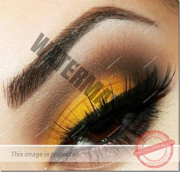 brown eyes makeup 244