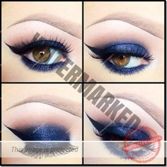 brown eyes makeup 301