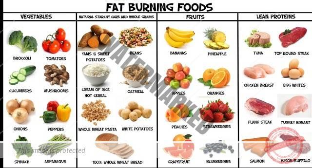 alimente-care ard grasimea