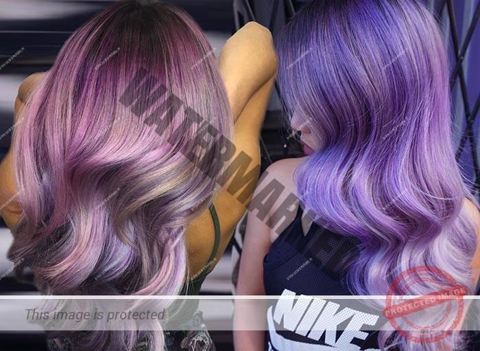 par-violet-1