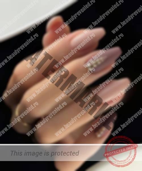 Manichiura Nude Modele Unghii Nude Cu Auriu Argintiu Sclipici Sau