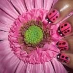 nails_001