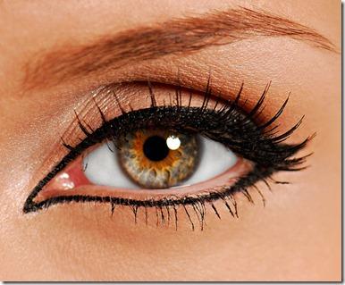 bigstockphoto_woman_close-up_eye_false_lash_1683030_s600x600